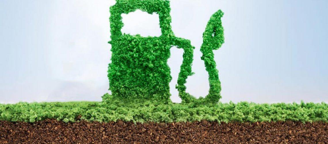 Obtención de Biometano a partir de residuos, un Proyecto de Seat.